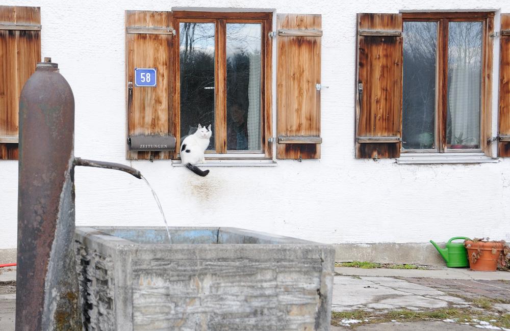 Bauernhof-Idylle . . .