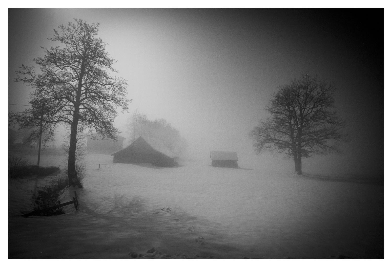 Bauernhof im Nebel in einer Mondnacht