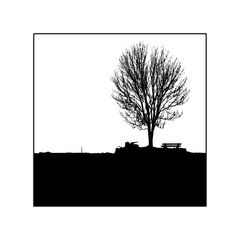 Baum, Bank