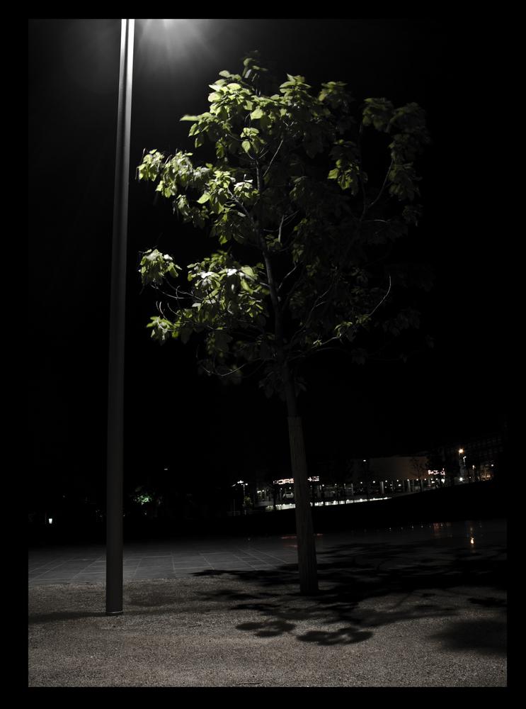 Baum eben :)