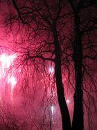 Baum im Feuerwerk