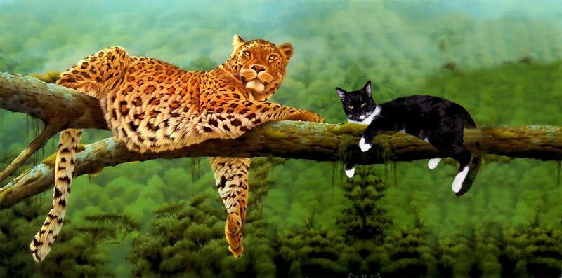 Baum - Katzen :-)
