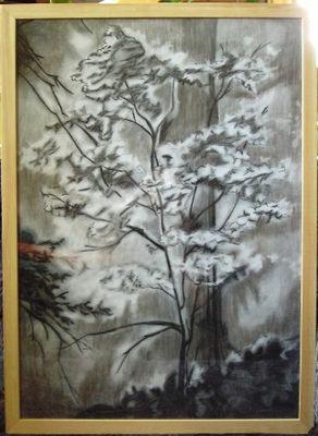 Baum - Kohlezeichnung