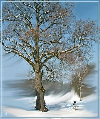 Baum - Mensch (Hintergrundbearbeitung mit GIMP)