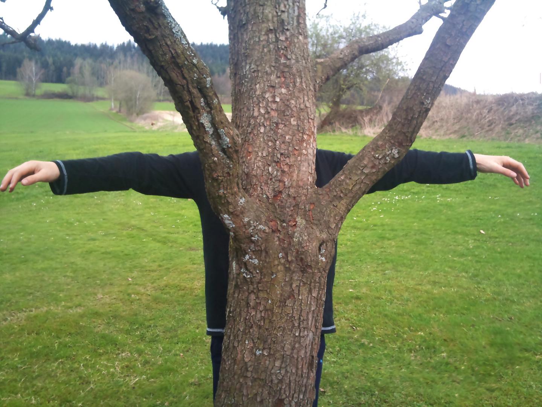 Baum mit Armen