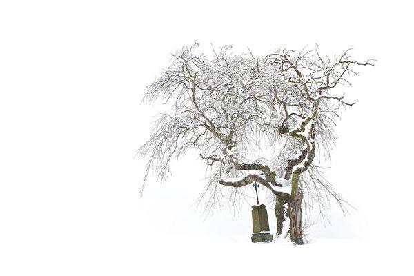 Baum mit Kreuz
