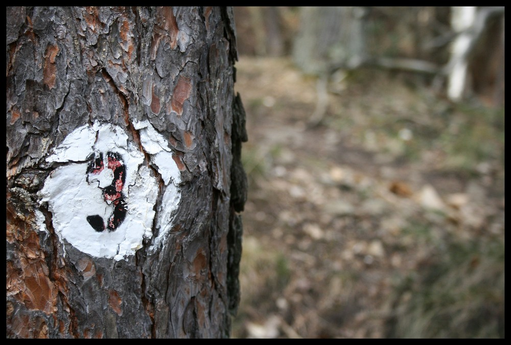 Baum Nummer 3