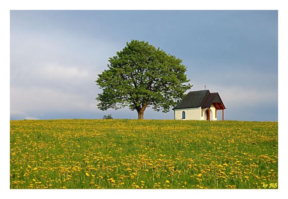 Baum und Kapelle