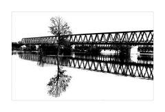 Baum vor Brücke im Fluss