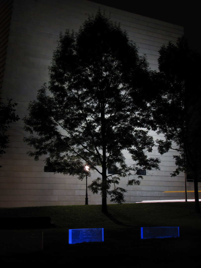Baum vorm Haus am Bach