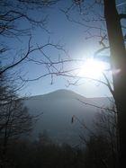 Baumfensteraussicht : langsam schleicht sich der Nebel und läßt die Sonne ins Tal :-)