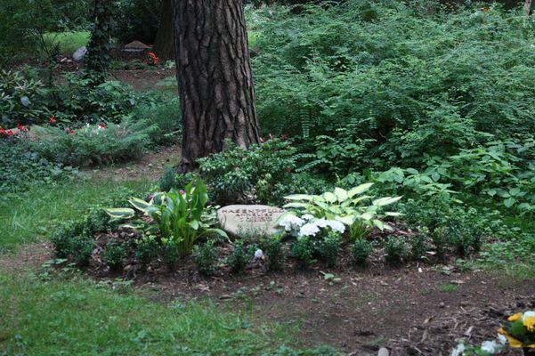 Baumgrab auf dem Heidefriedhof