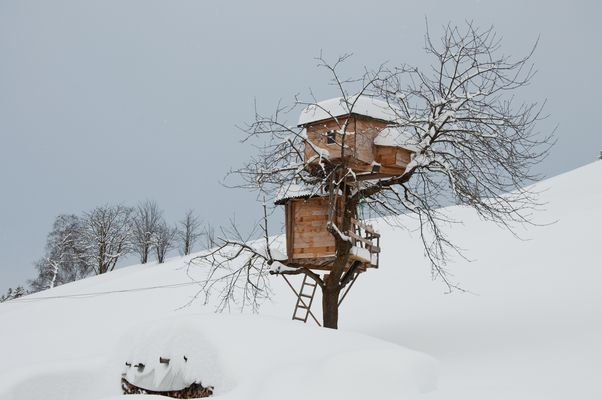 Baumhaus am Weerberg