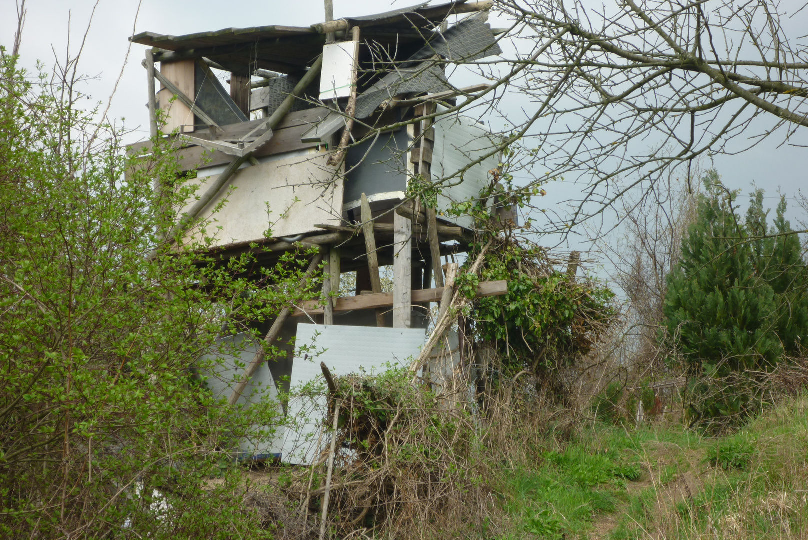 Baumhaus -unvollendet?