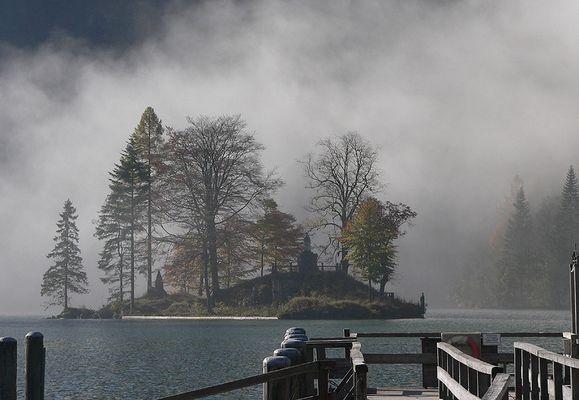 Bauminsel vor dem Nebel