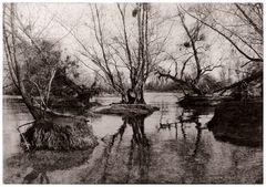 Bauminseln III