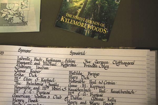 Baumkataster Kylemore Abbey