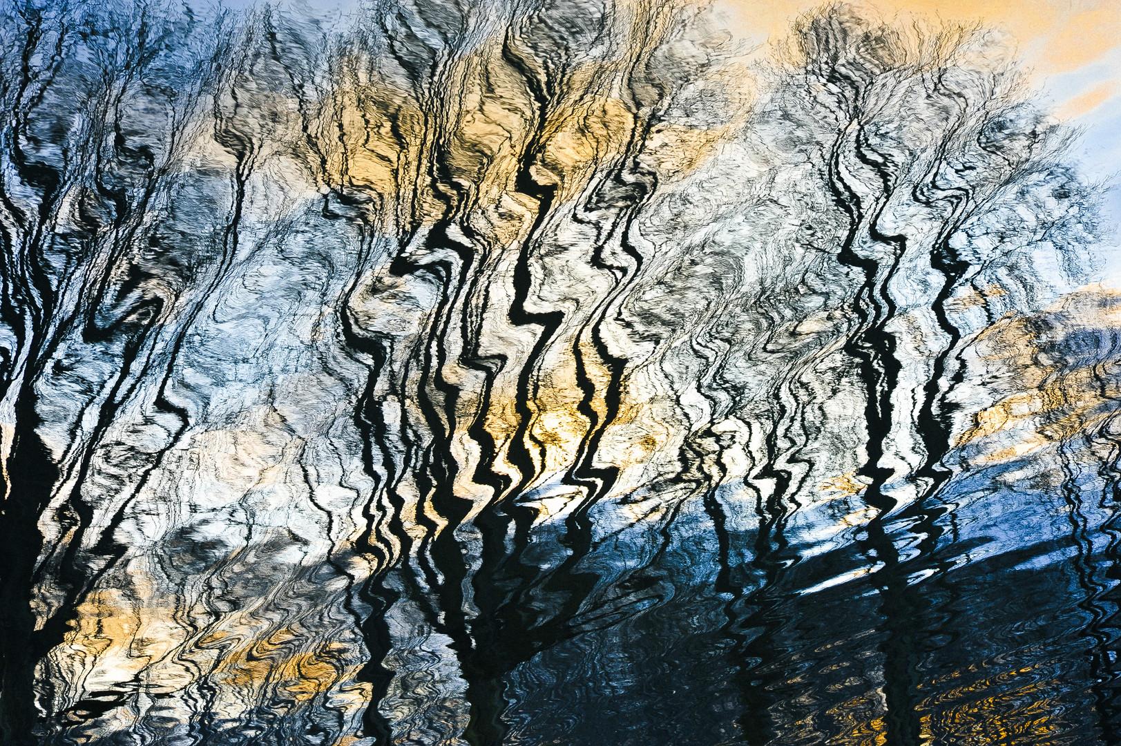Baumstrukturen im Wasser