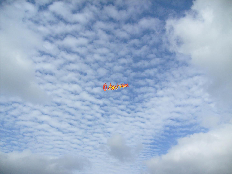 Bauschige Wolken