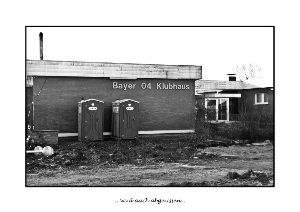 BayArena Umbau #5