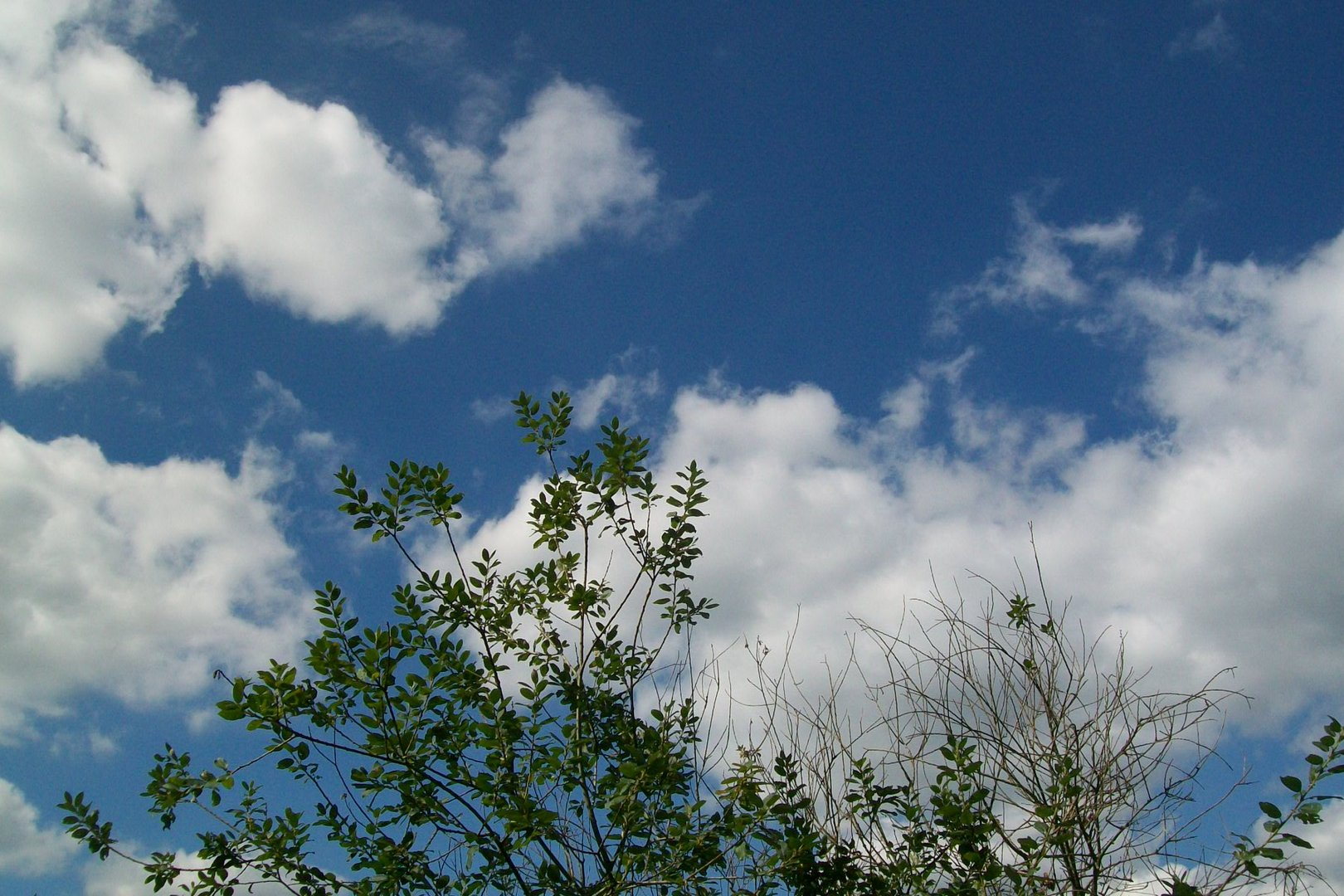 Bayerische Wolken