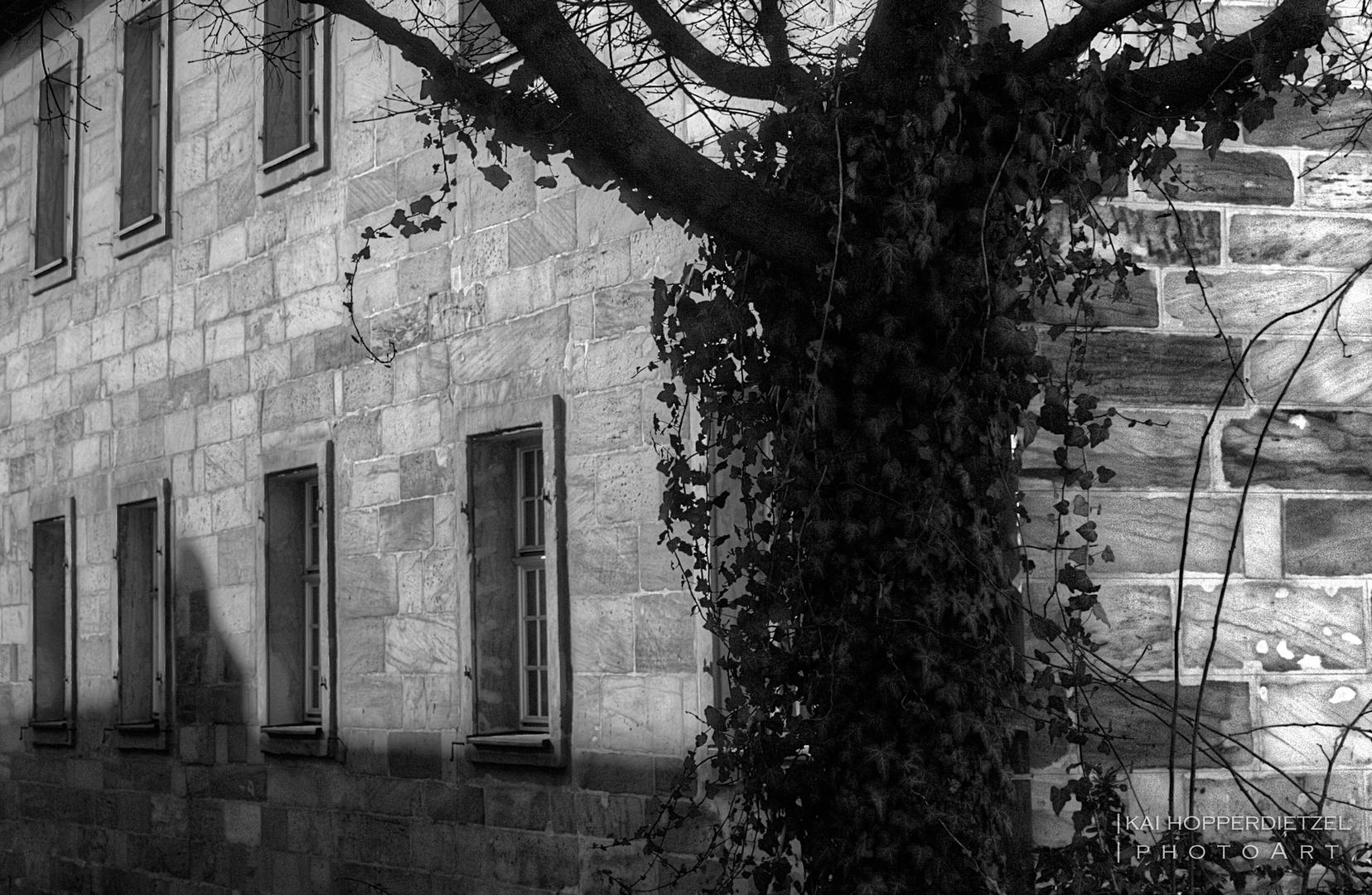 Bayreuth III