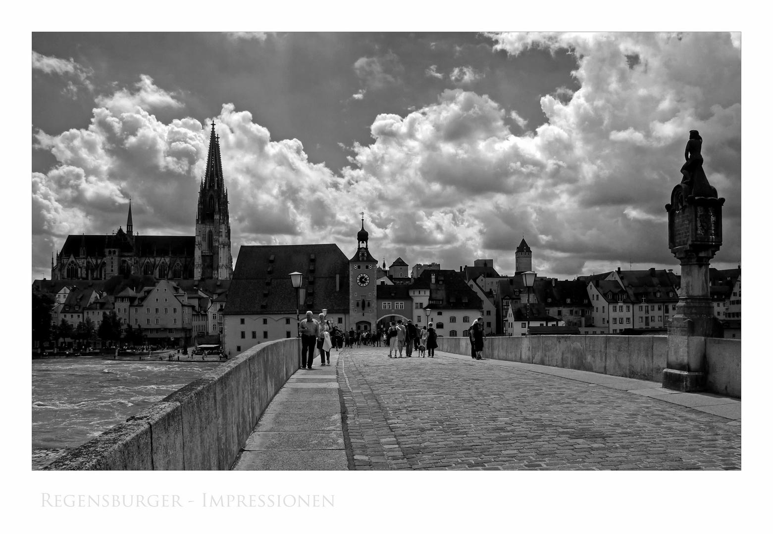 """Bayrische Impressionen """" Regensburg, der Blick von der Steinerne Brücke """""""