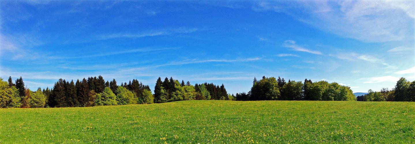 Bayrischer Frühling