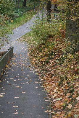:-)  BC im Herbst...