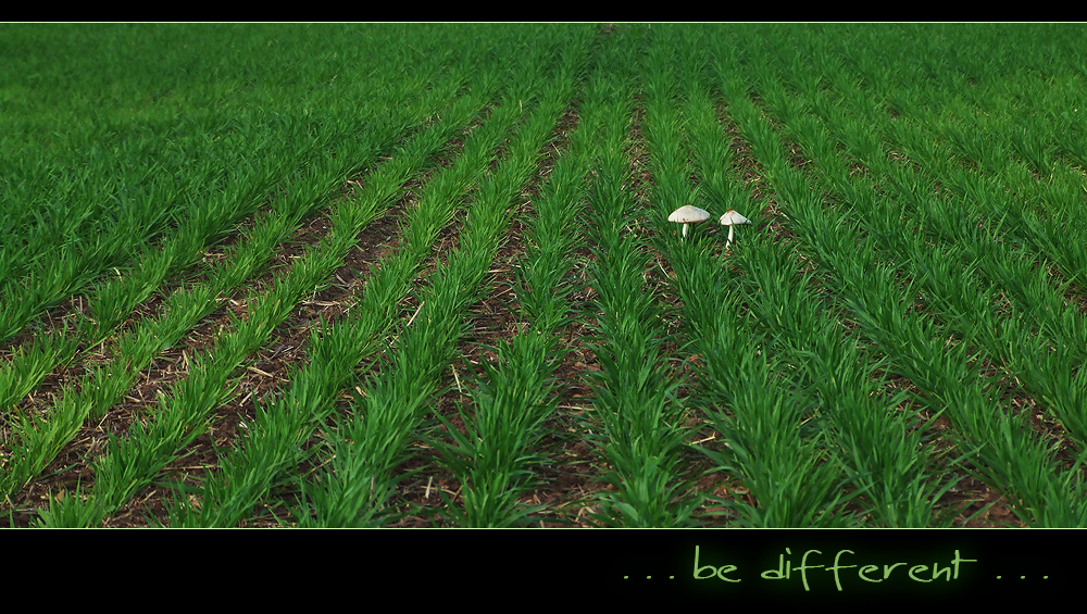 Be Different 01
