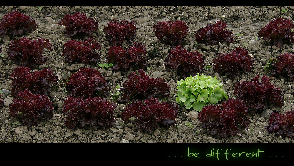 Be different 02