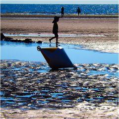 Beach Boy…