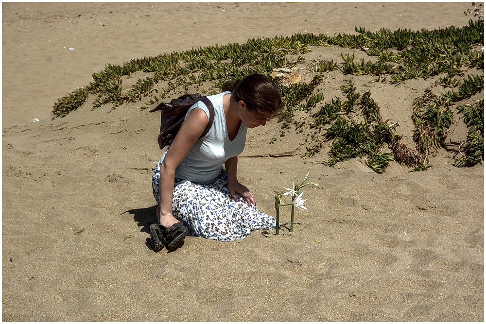 Beach-Flower