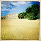 Beach Fuerte