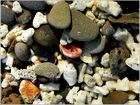 Beach Impression III