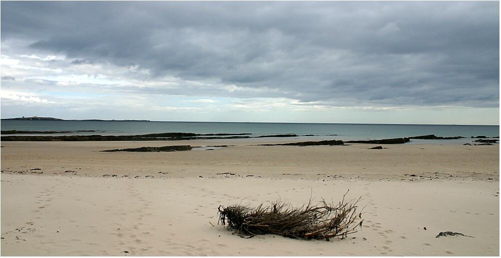Beach in Northumberland