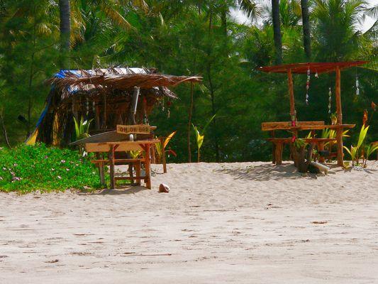 beach-live