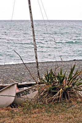 beach of kaikoura