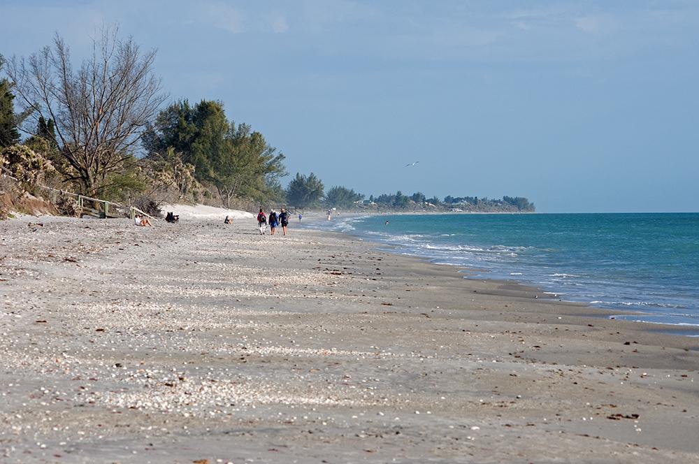 Beach Walking...