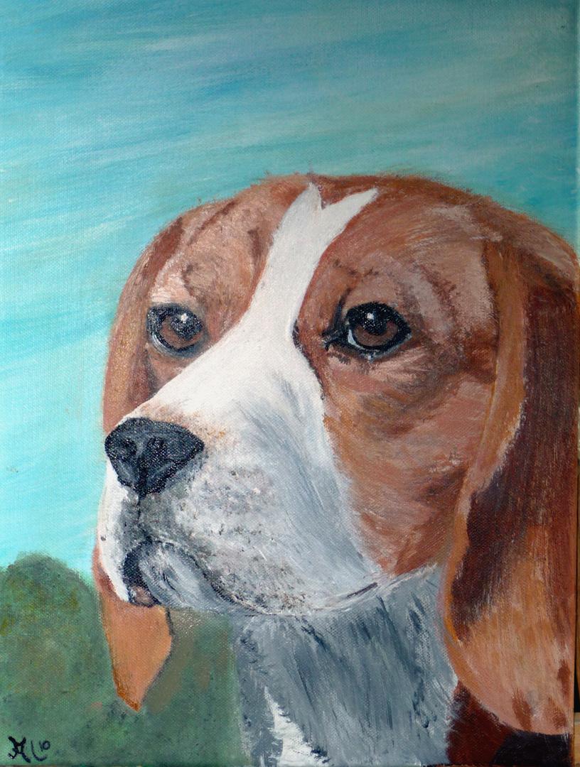 Beagledame