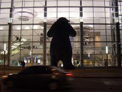 Bear at the Gates at Dawn