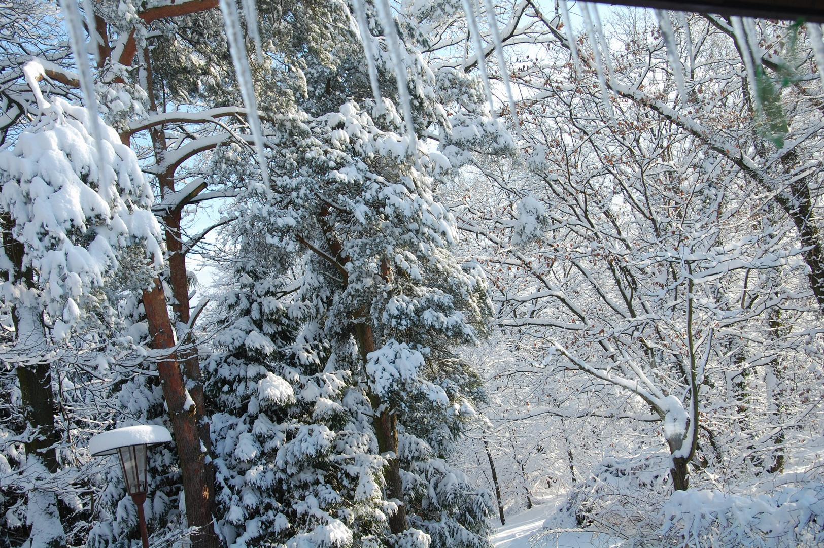 Beau mariage entre le soleil et la neige au levé du jour