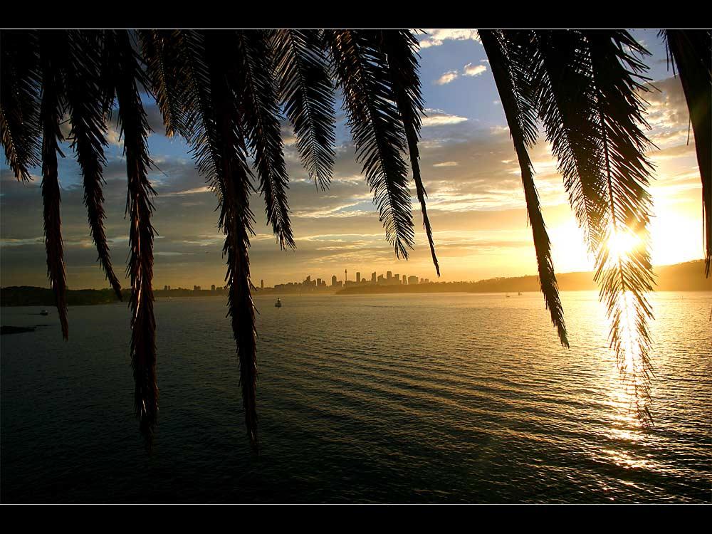 Beautiful Sydney