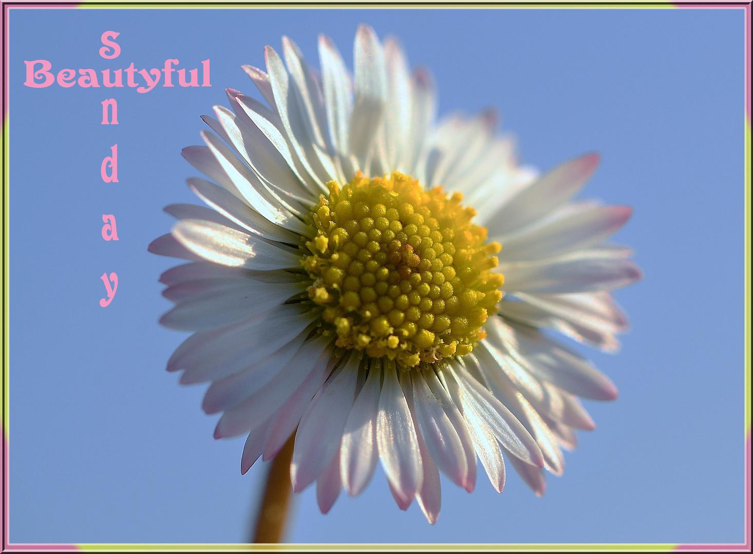 Beautyful Sunday