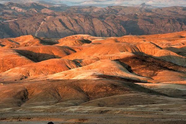 Bedroht - Endangered