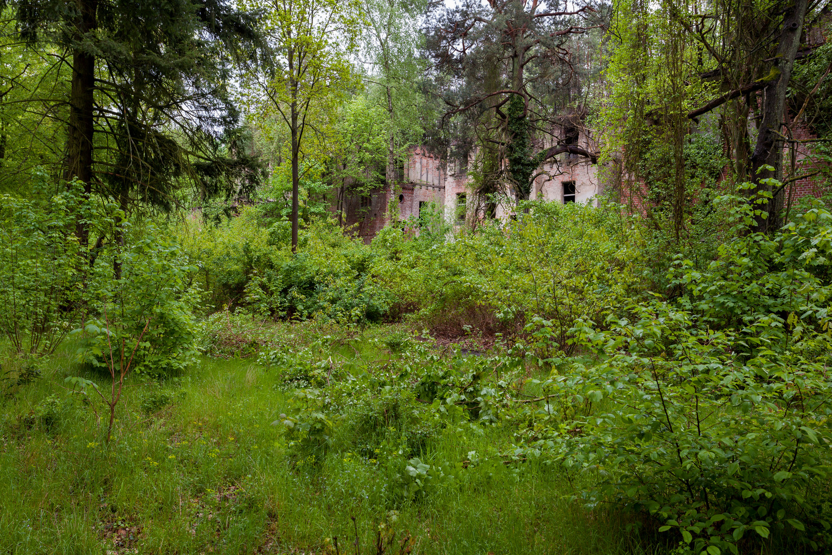 Beelitz Heilstätten - Frauenlungenheilstätte Alpenhaus (4)