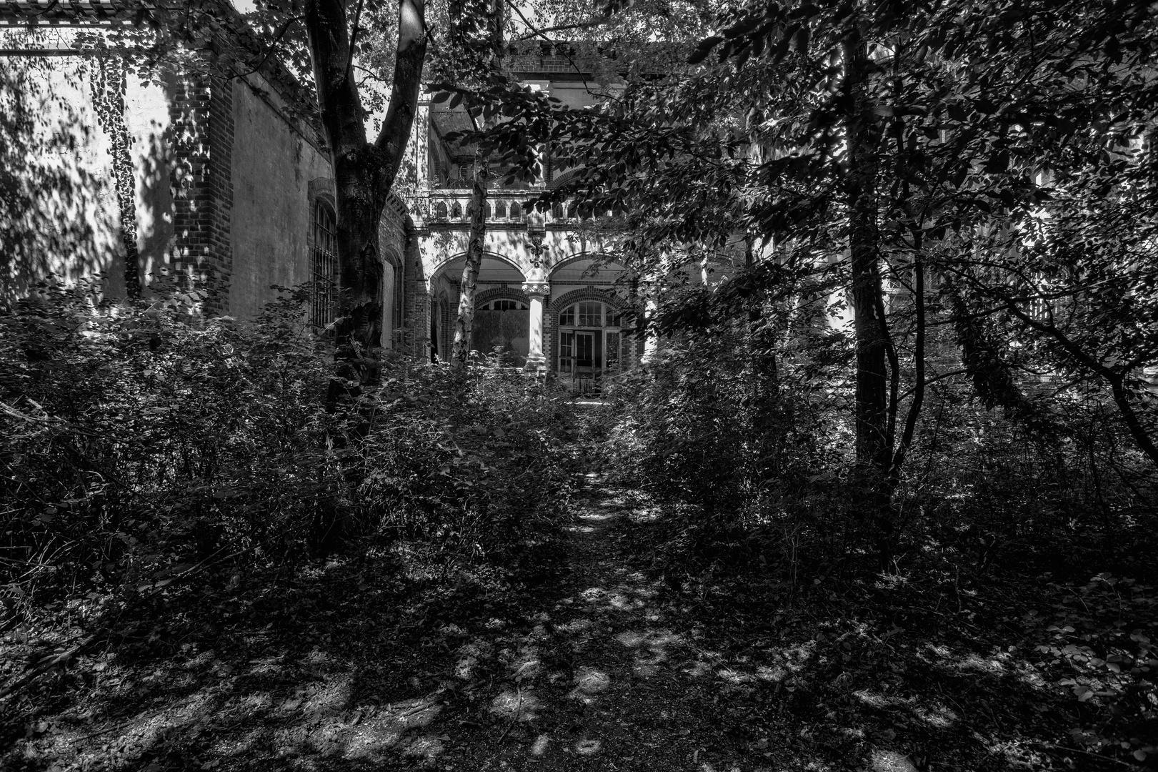 Beelitz Heilstätten - Frauensanatorium (46)