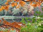 Beetzer See im Herbst