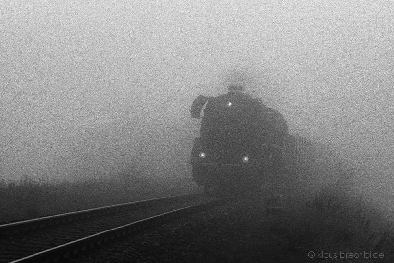 Begegnung im Nebel