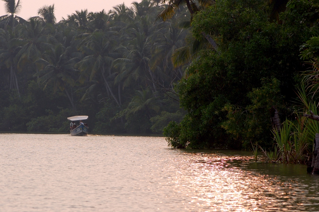 Begegnung in den Backwaters